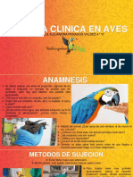 HISTORIA CLINICA EN AVES.pdf