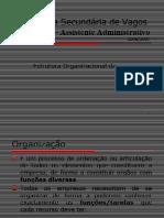 126544586_estrutura_organizacional_1.ppt