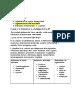 guia salud ocupacional Santiago Castro Vieira