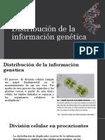 2-3-Genes-cromosomas-genomas-estructura (1).pdf