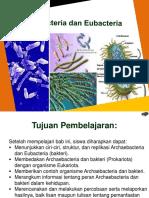 BAB 4 Archaebacteria Dan Eubacteria
