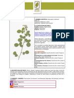 Manayupa.pdf