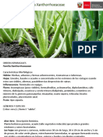 Familia Xanthorrhoeaceae.pdf