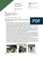 OFICIO N° S-2020-            INFORME PRODUCTOS NO CONFORME.docx