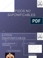 lpidosnosaponificables-091001151927-phpapp01