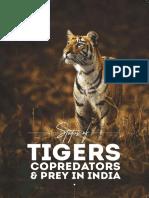 Tiger-Status