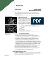 la-silice-industrielle.pdf