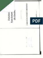 Estrutura e Funcionamento do Ensino_Carlos da Fonseca Brandão