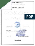Raport de expertiză tehnică a podului din str. M. Viteazul