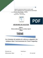 Memoire_Master