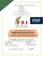 ETUDE_ET_MISE_EN_PLACE_DUNE_SOLUTION_DE.pdf
