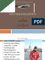 hasbi SJAMSIR-psycholinguistics