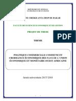 PROJET DE THESE 2017.pdf