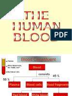 3 Human blood