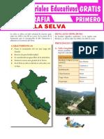 La-Selva-Para-Primer-Grado-de-Secundaria (1)