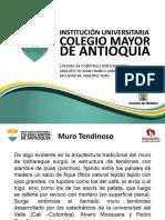 MUROS TENDINOSOS (1)