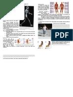 Mover o corpo Rosane.pdf