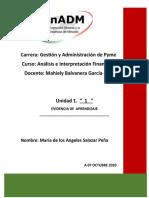 AIF_U1_EA_MASP.doc