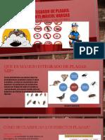 TRABAJO FINAL CONTROL DE PLAGAS.pptx