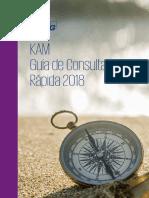 KAM Guia de referencia 2018.pdf