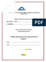 1 caratula, resumen ejecutivo.docx