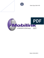 SBUs of Mobilink