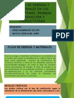 FLUJO DE ENERGIA, BIOMASA, PRODUCCION Y PRODUCTIVIDAD.pptx