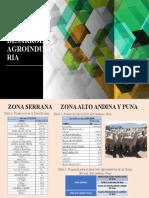 PROPUESTAS DE DESARROLLO AGROINDUSTRIA.pptx