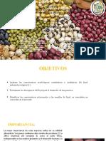 Practica Nº 4 Descripcion de frejoles y legumbres.pptx