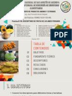 PRACTICA 5 - DIAPOSITIVAS - VIERNES 3.50.pdf