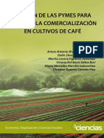 Dialnet-GestionDeLasPymesParaMejorarLaComercializacionEnCu-705761.pdf