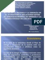 RUTAS DE LA MATERIA Y LA ENERGÍA EN