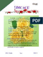 kaabi rapport.doc