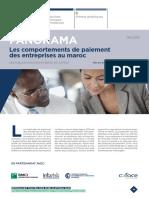 PANORAMA-comportements+de+paiement-maroc
