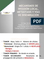 1. MECANISMOS DE INVASION LOCAL Y METASTASIS Y VIAS