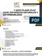 Ensayo Flat Jack