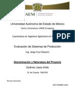 DENOMINACION Y NATURALEZA DEL PROYECTO