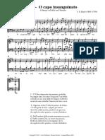 111 - O CAPO INSANGUINATO.pdf