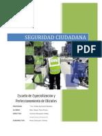 SEGURIDAD NACIONAL SBTE. PARRA FLORES