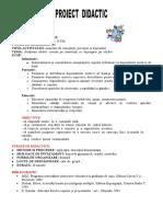 PROIECT DE ACTIVITA DPM