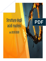 Struttura DNA.pdf
