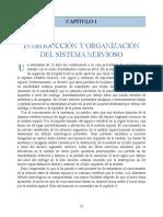 Neuroanatomia Clinica Snell 7a Edicion_booksmedicos.org (pdf.io)