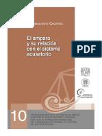 EL AMPARO Y SU RELACION CON EL              SISTEMA ACUSATORIO.pdf