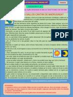 a. Primaria_Texticon_27_Historia del gallo (1)