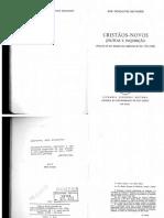 José Gonçalves Salvador - Cristãos-novos jesuitas e inquisição_OCR.pdf