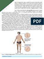 01 (27).pdf