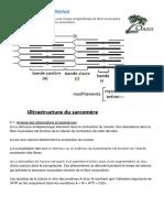 Corrigé Bac S2 1999.pdf