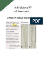 L_utilisation_de_l_ATP_par_la_fibre_musculaire.pdf