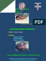 Malform congenitas