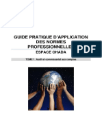 Guide pratique d'application - Audit et Commissariat aux comptes.pdf